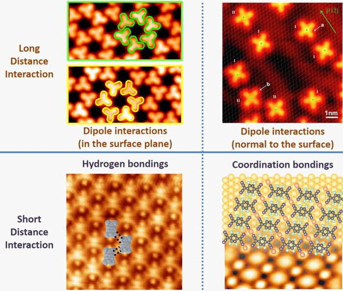 The Jiang group studies molecules adsorbed onto solid surfaces