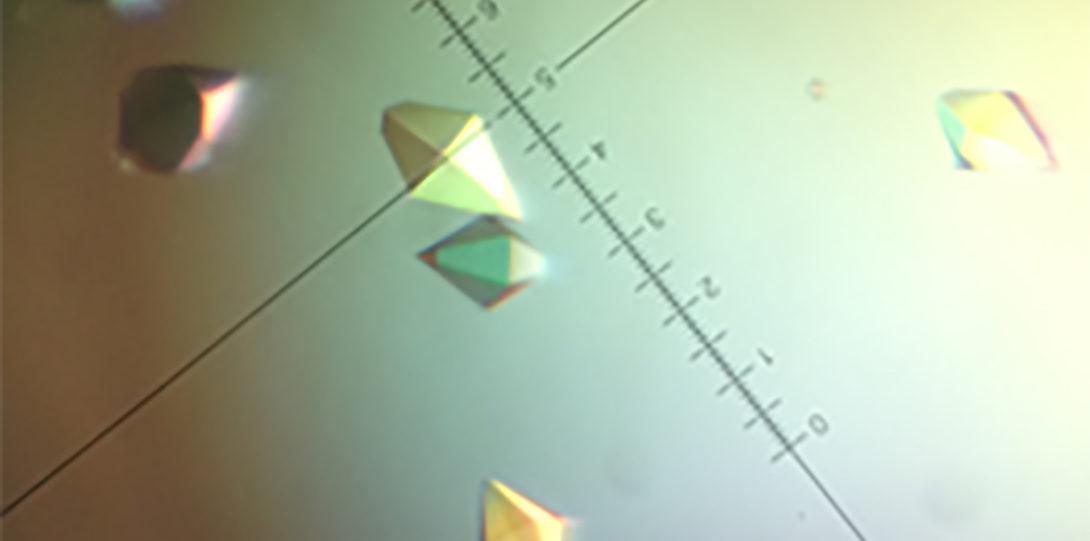 Prof. Yang's group makes single crystals of proteins.
