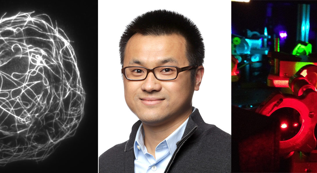 Ying Hu, and expert on super resolution imaging, is joining our department as an assistant professor in Fall 2018!