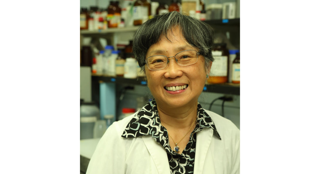 Prof. Fung wins the 2018 Silver Circle Award