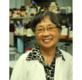 Prof. Fung wins the 2018 Silver Circle Award