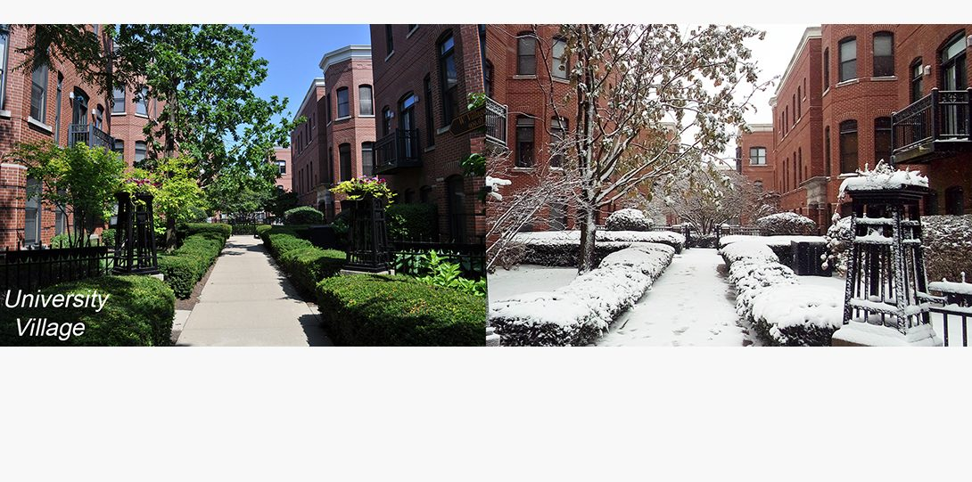 Summer and snow in Chicago!
