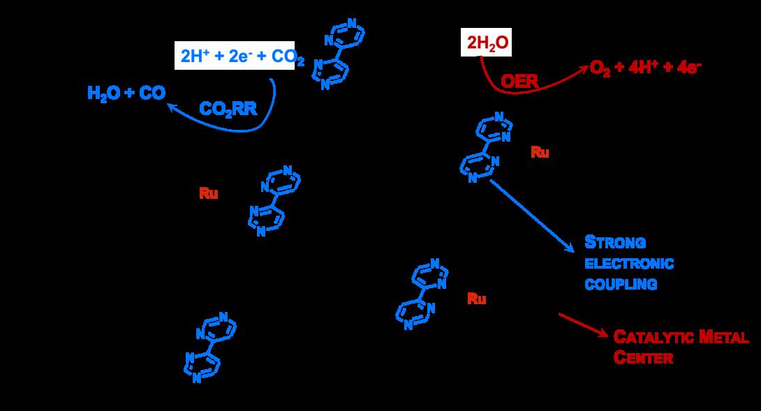 The Glusac group uses graphene ribbons to study alternative energy generation.