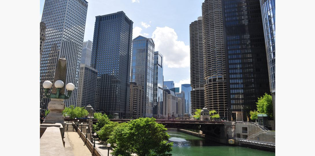 The Chicago River drew a few visitors on Memorial day.
